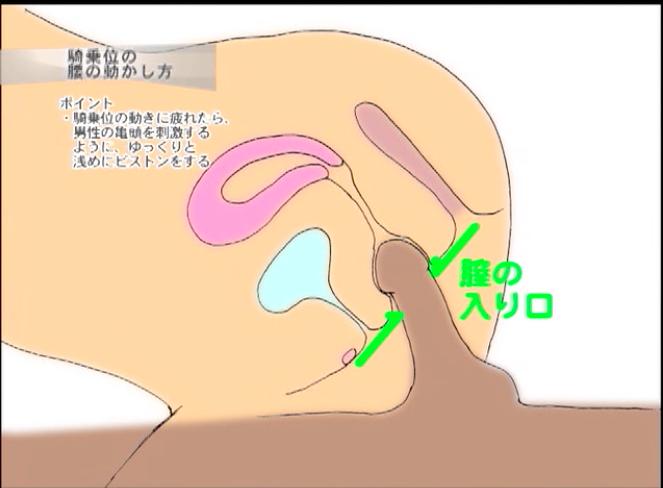 締まりの強い膣の入り口がカリにあたるので小刻みに動かすと、とても気持ちいらしい